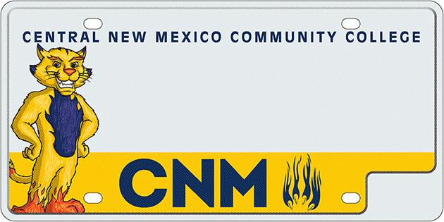 CNMCC 300 2pt1
