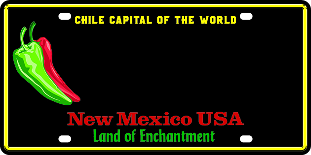 Chile Capital Passenger 300 2pt1(1)