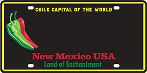 Chile License Plate Picture