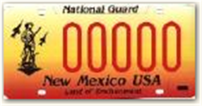 Active Duty National Guard License Plate